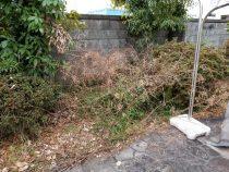 一宮市 空き家管理 草刈りと除草作業の様子 作業前