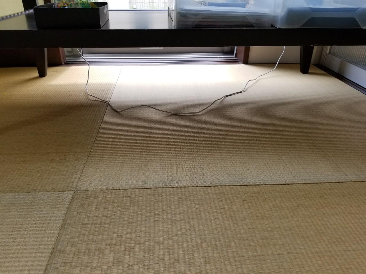 20200805 半田・カビ取り (3)