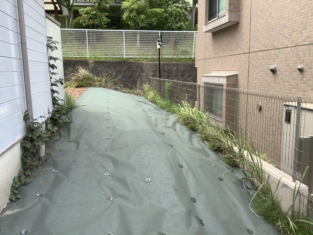 空き家管理 防草シート 除草剤 草刈り  (3)