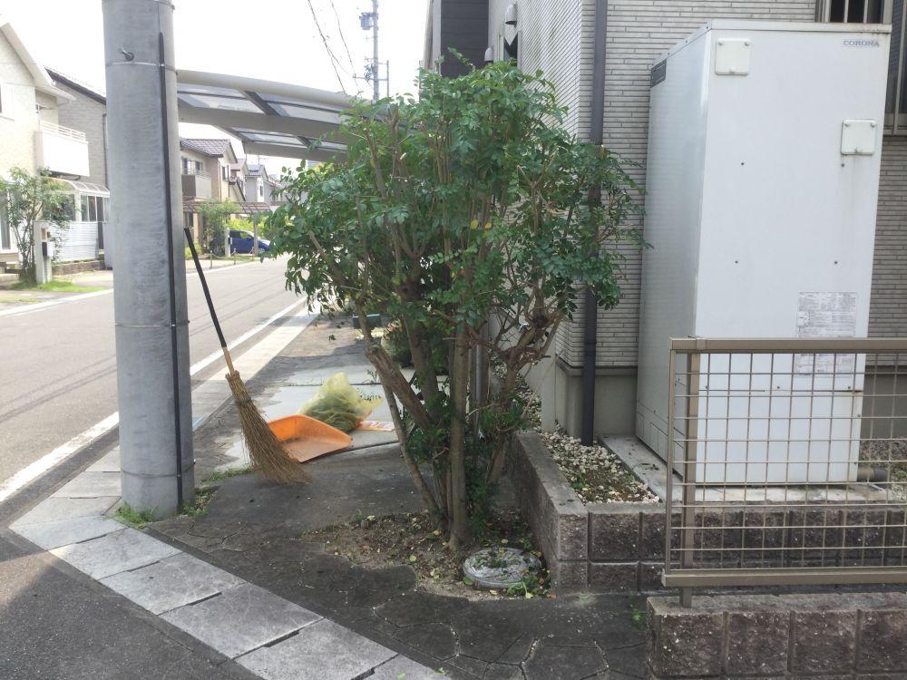 枝切り (3)