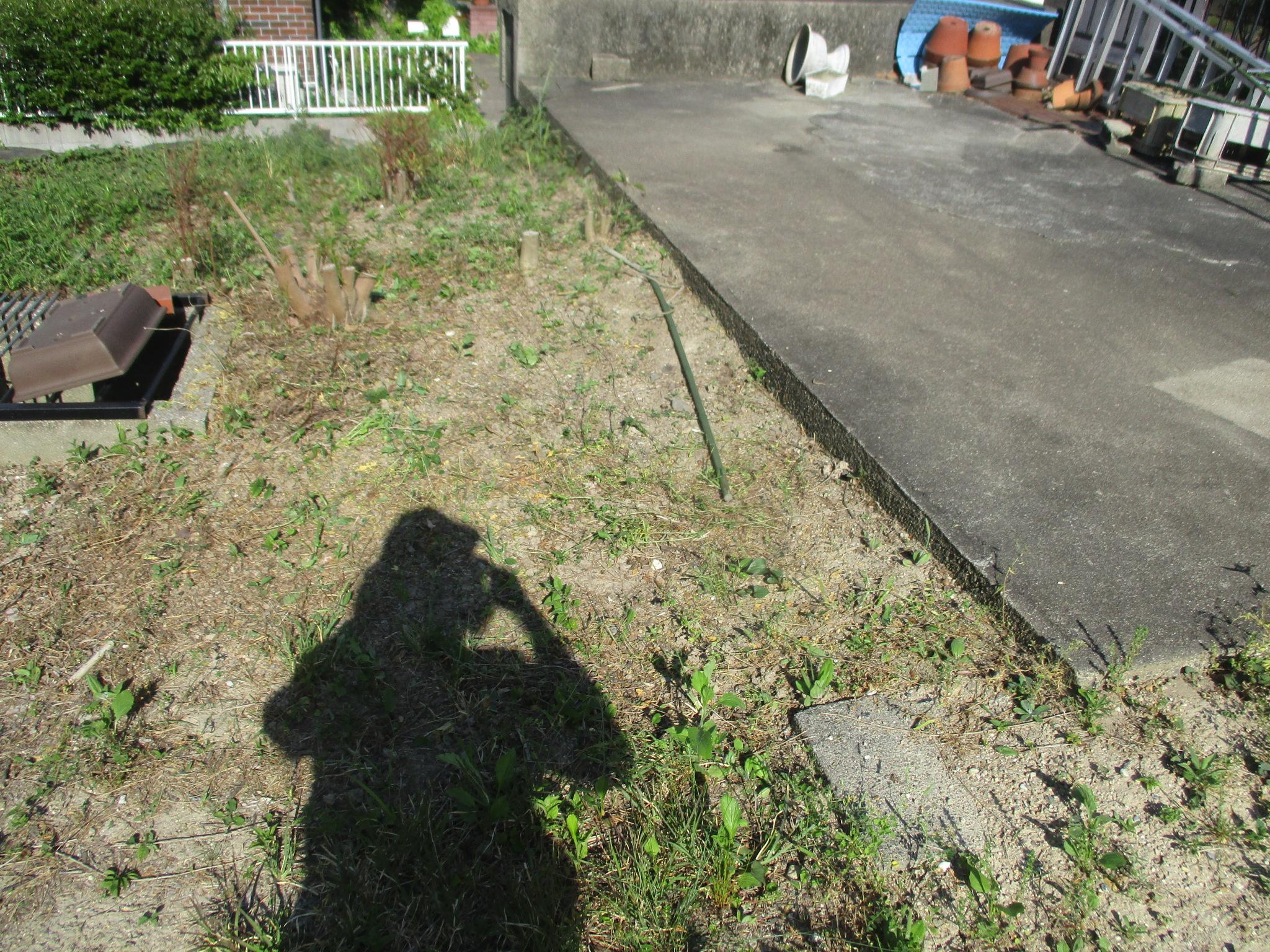 ①-3 草取り