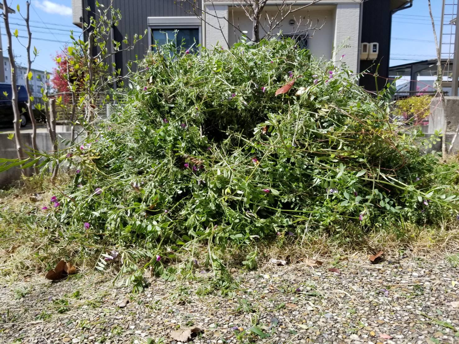 20200410 空き家管理 草刈り 草取り 除草作業 (2)