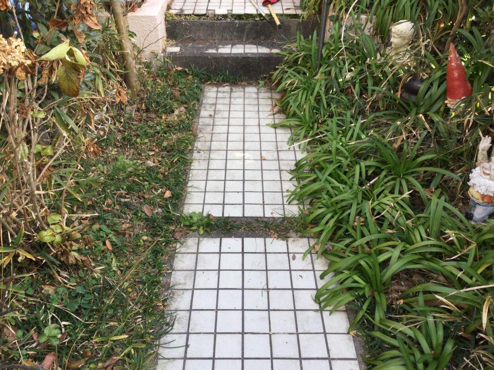 空き家管理 落ち葉 草取り作業 (4)