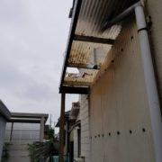 清須市 蔦の除去 作業後