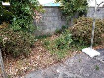 一宮市 空き家管理 草刈りと除草作業の様子 作業後