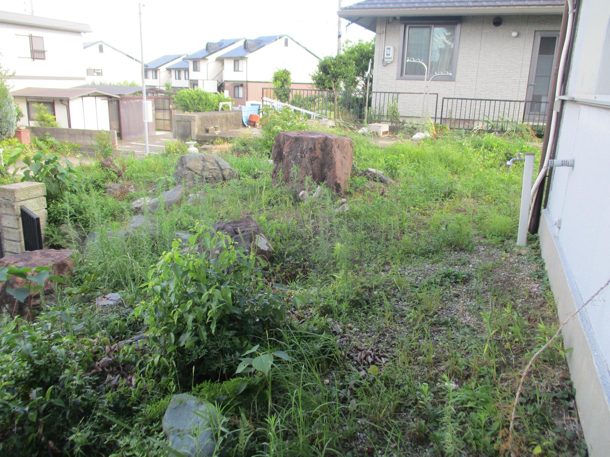 雑草 生い茂る 草 庭 草刈り 草取り