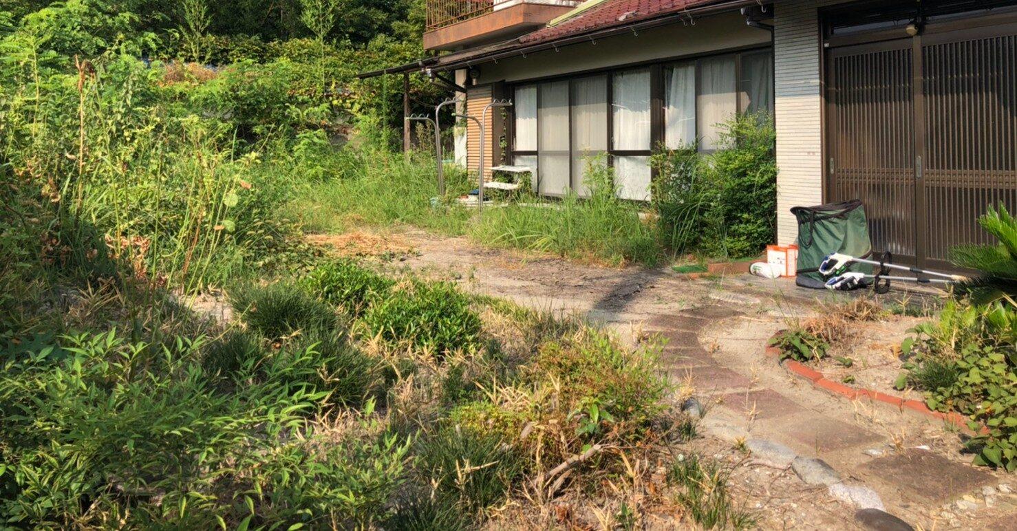 20200820 天白区 服部さん 草刈り、自然生えの伐採 (10)
