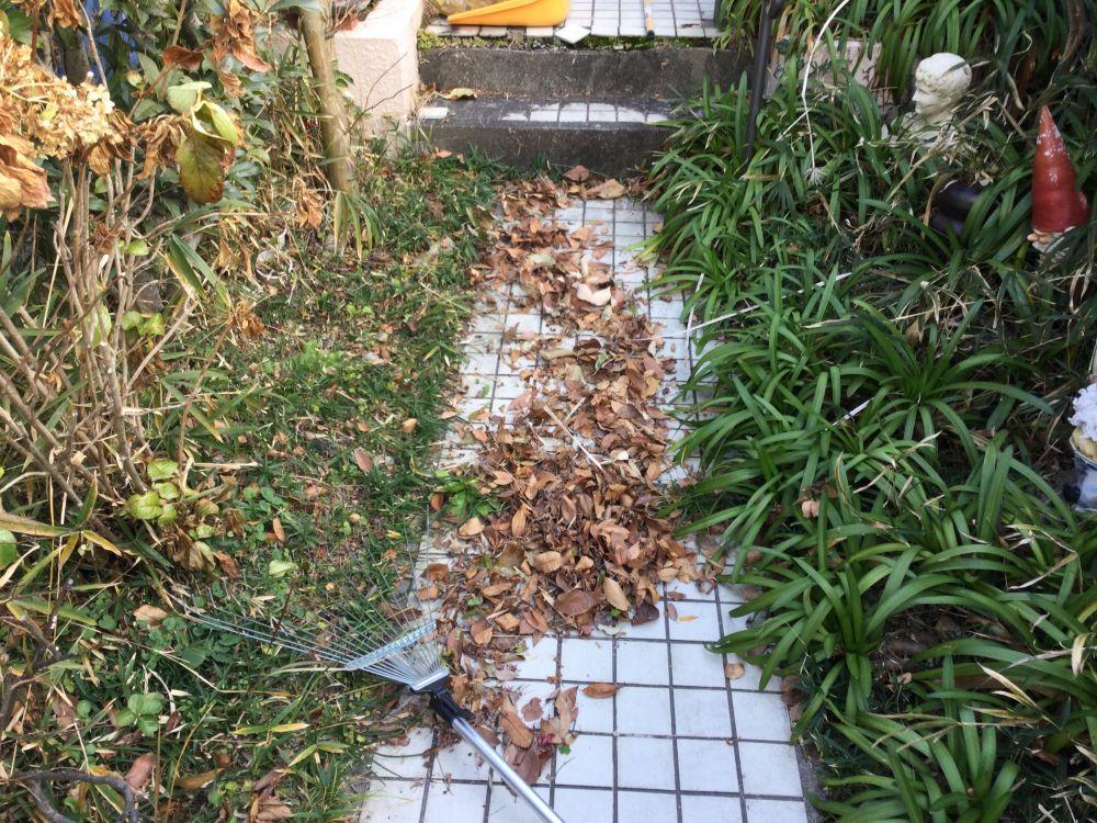 空き家管理 落ち葉 草取り作業 (5)