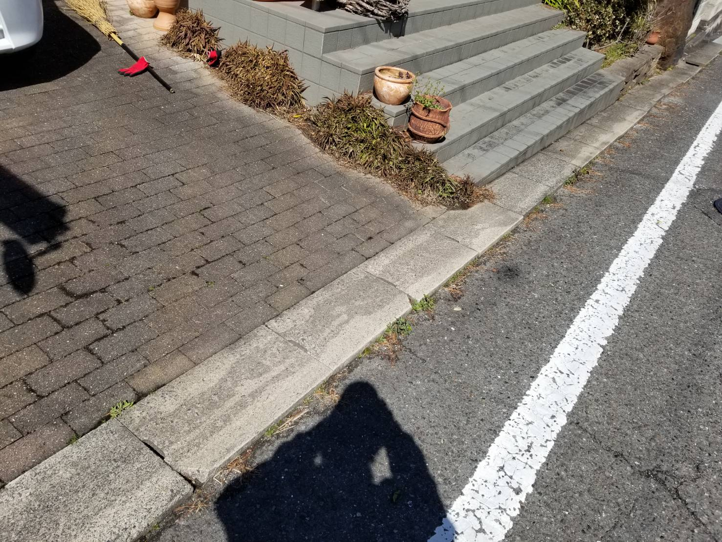知多市 空き家管理 落葉清掃 (2)