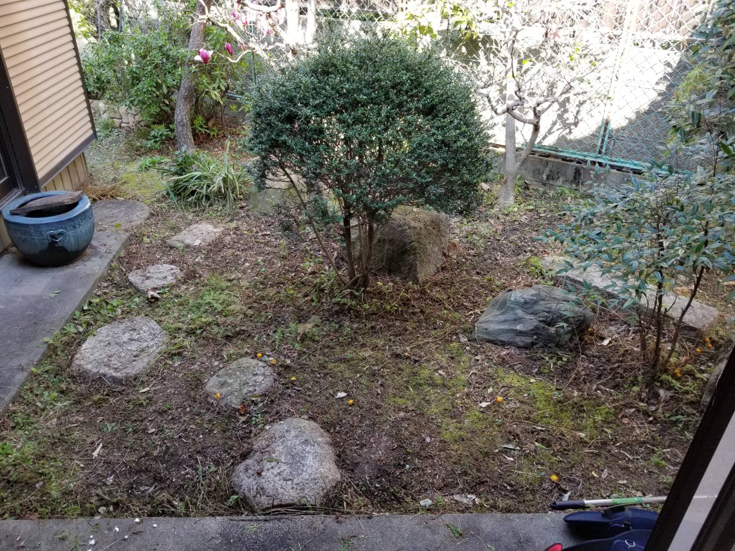 名古屋市西区 空き家管理 除草作業 (4)