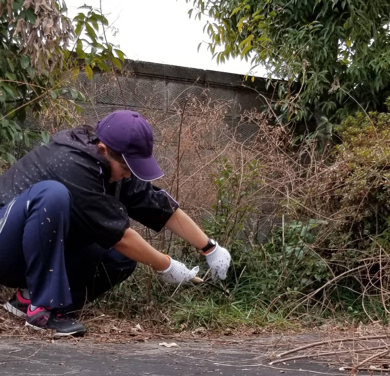 一宮市 空き家管理 草刈りと除草作業の様子2