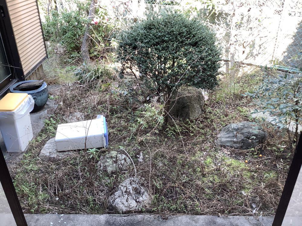 名古屋市西区 空き家管理 除草作業 (2)