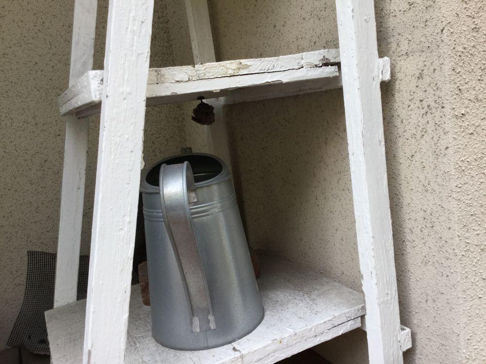 日進市 屋外作業 蜂の巣