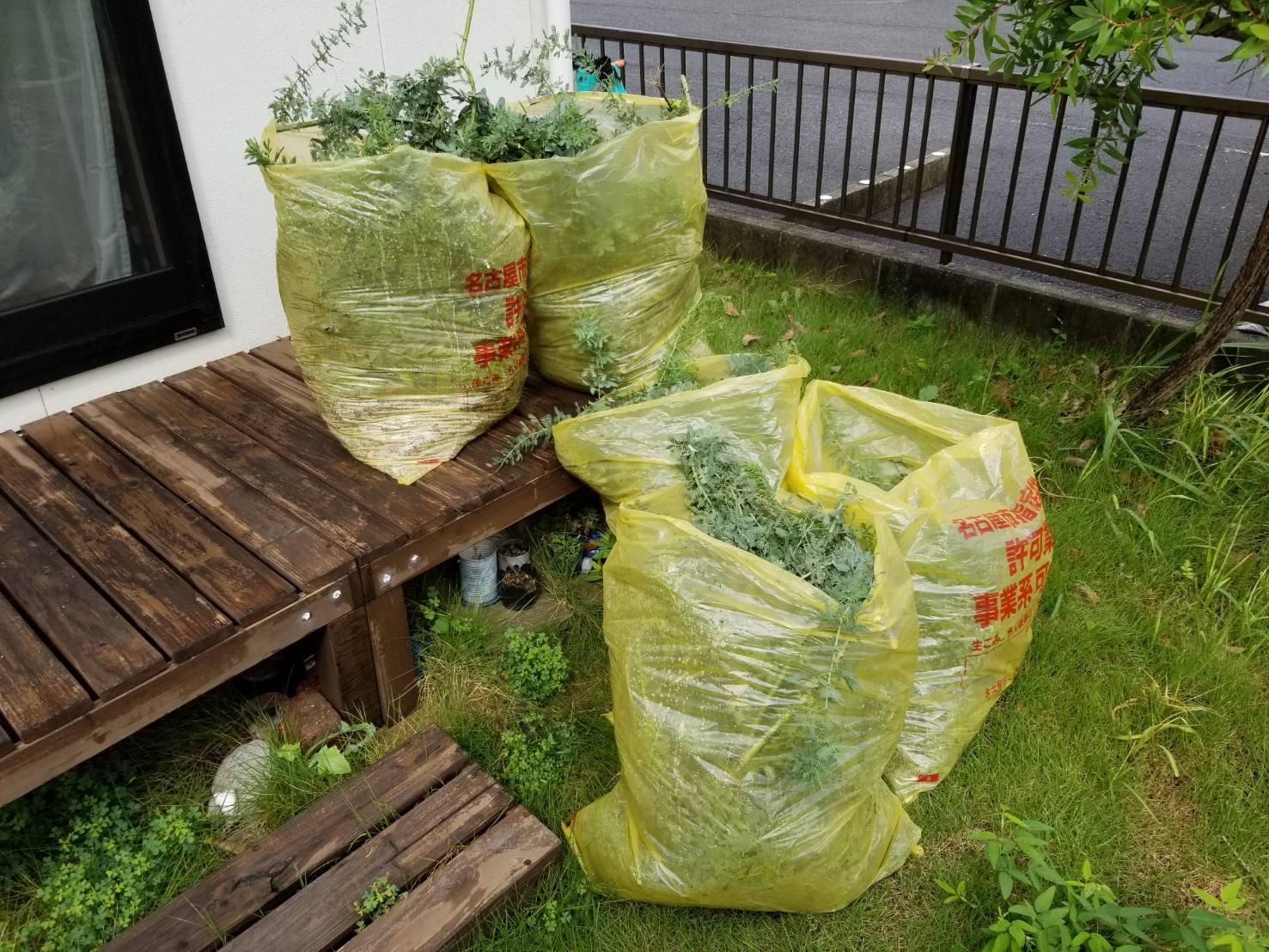 空き家管理 庭木の枝切 (1)